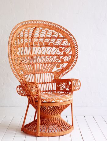 Classic peacock chair via The Family Love Tree