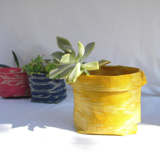 abaca planters